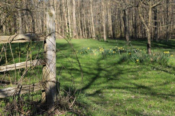 Glen Elbe grounds