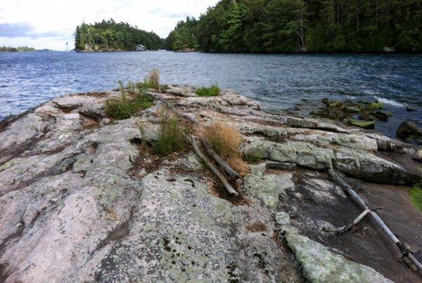 Doctor's Island